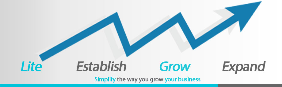 Grow your business with Wandsoft