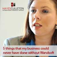 A customer perspective: 5 things that my business could never have done without Wandsoft