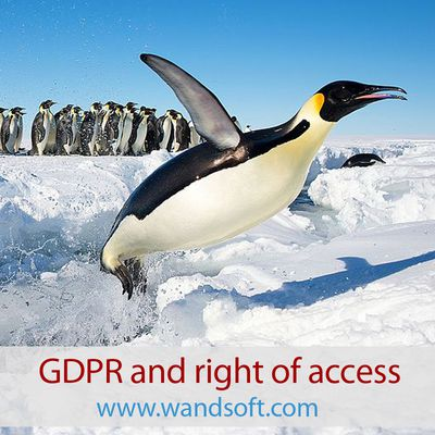 GDPR and right of access